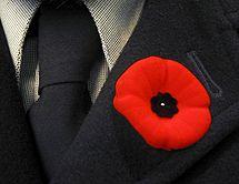 Canadian lapel poppy